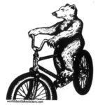 Bear_on_a_Cruise_4a5fac39a35e0.jpg